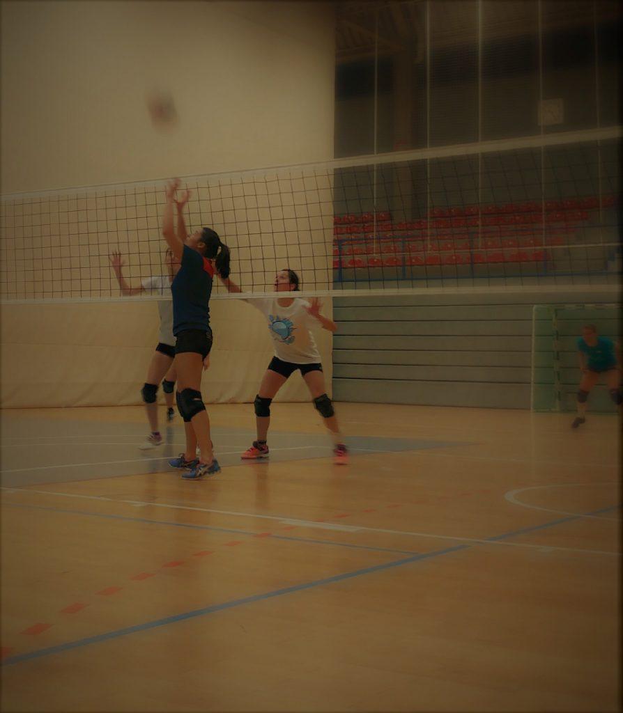 Volleyball Grundlagen: Was macht eigentlich…der Zuspieler?