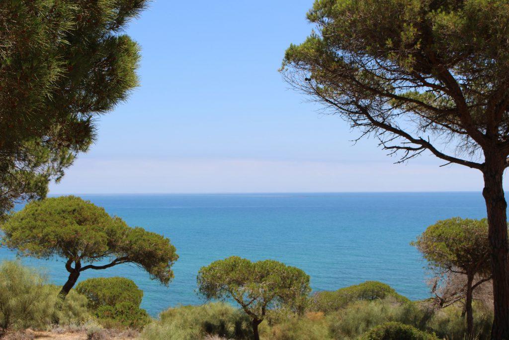 Reisetipps für Andalusien: Beliebte Sehenswürdigkeiten in Andalusien