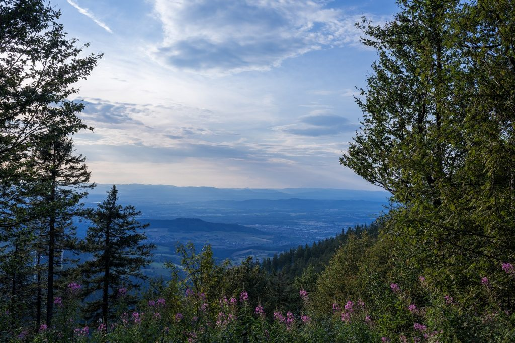 Blick vom Schauinsland auf den Schwarzwald